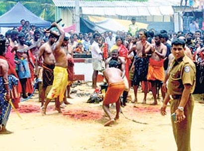 Munneswaran Kovil - Animal Sacrifice