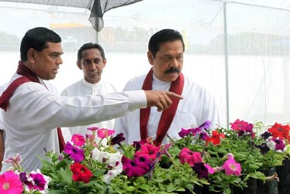 Sri Lanka president Mahinda Rajapaksa with Minister Basil Rajapaksa
