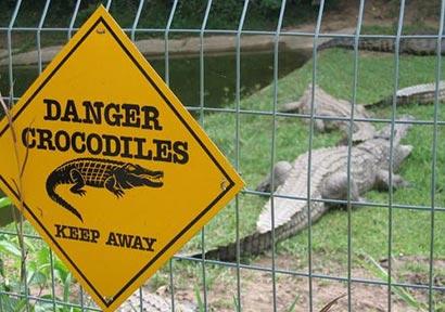crocodile park Matara Sri Lanka