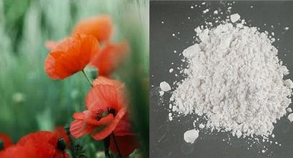 Red poppy and heroin