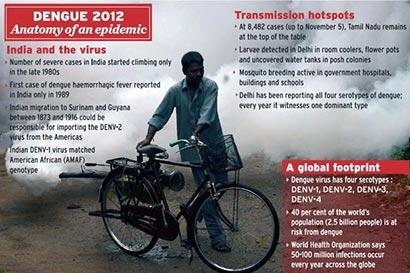 Dengue - 2012