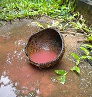 Red Rain in Sri Lanka