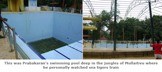 Prabhakaran's swimming pool