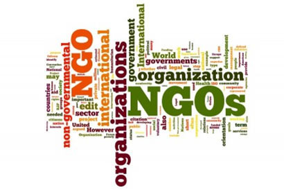 Non Government Organizations