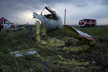 Malaysian Airline MH17 down
