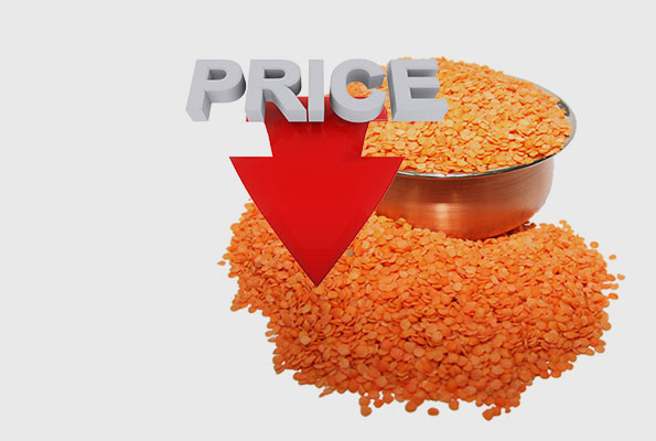 Dhal price