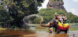 Chinese tourists in Sri Lanka