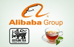 Alibaba with Ceylon tea