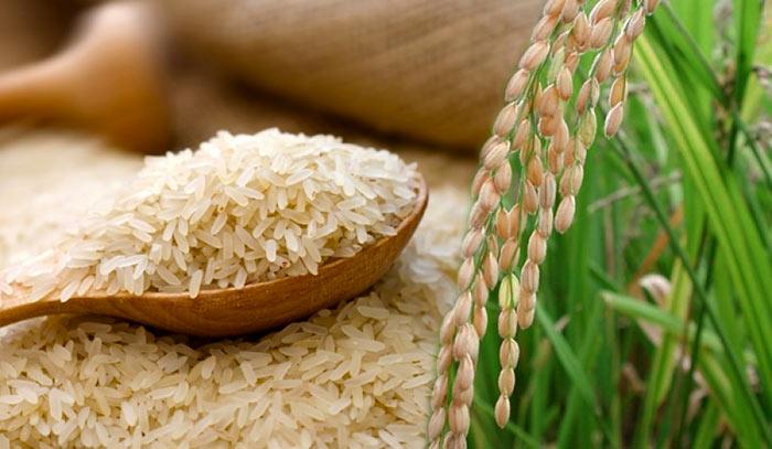 Nadu rice