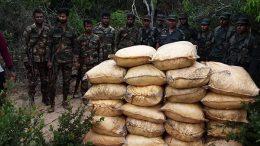 Commandos seize 946kg of smuggled turmeric in Mannar Sri Lanka