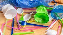 Plastic ban in Sri Lanka
