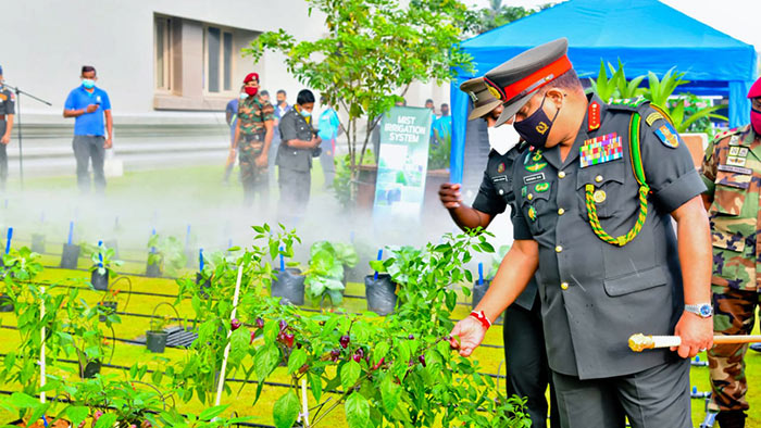 Sri Lanka Army establishes Agriculture and Livestock Corps