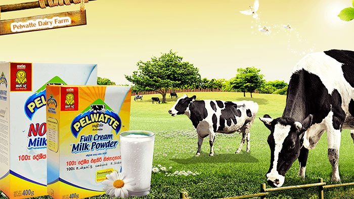 Pelwatte dairy products in Sri Lanka