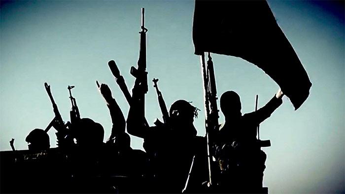 Islamic Organisations