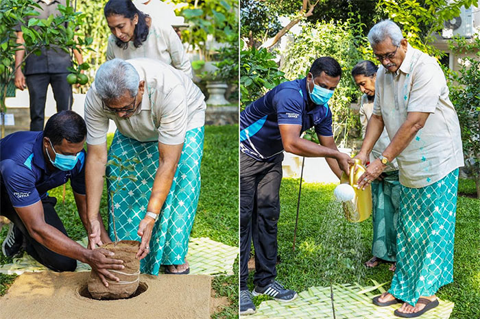 Sri Lanka President Gotabaya Rajapaksa begins work in New Year by planting sapling